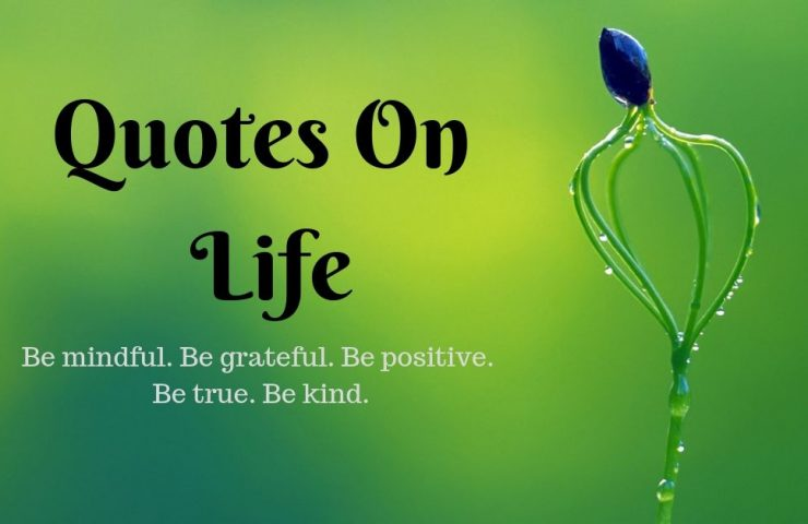 Image on Quotes